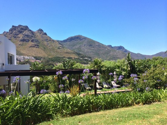 CUBE Guest House: Gartenanlage