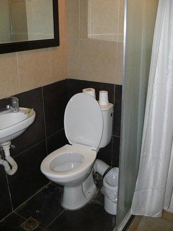 The Ophir Hotel : bagno nella camera