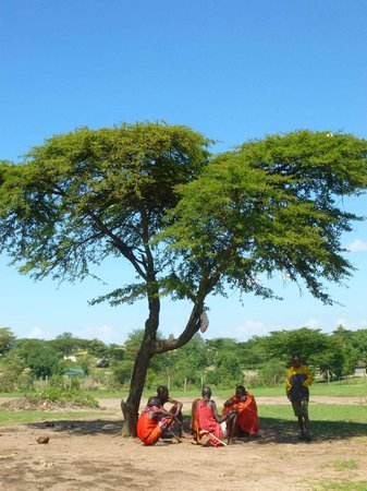 Sentrim Mara Camp: Vor dem Masaidorf