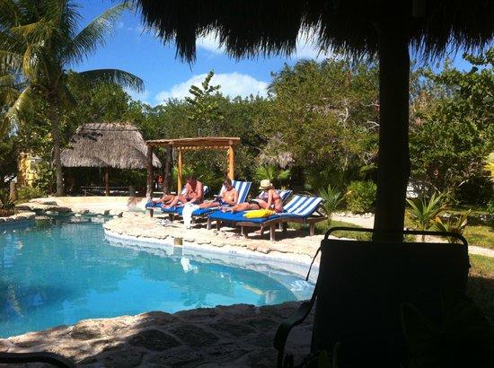 Hotel Villas Delfines: Poolområdet