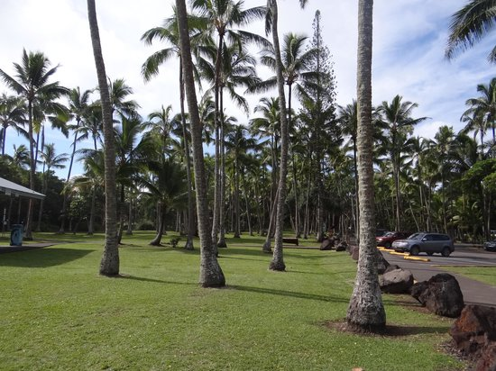 Ahalanui Park: The parking area