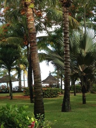 Beachcomber Le Victoria Hotel: Lovely grounds