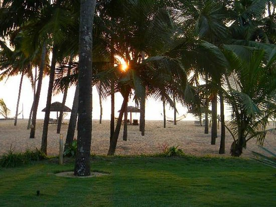 Malabar Ocean Front Resort and Spa: Photograph from the Lawn,Beach opposite the property