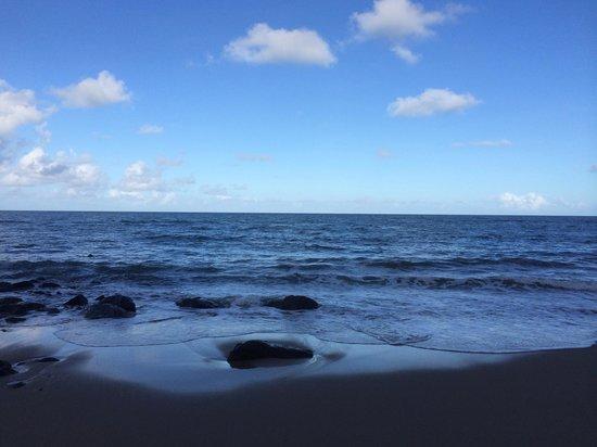 Turtle Cove Beach Resort: Afternoon vista