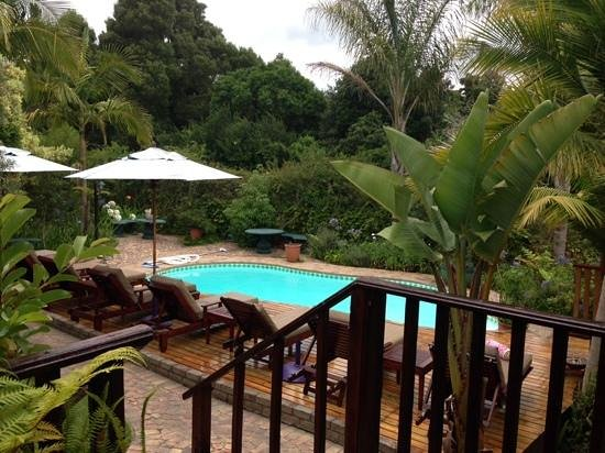 Knysna Tonquani Lodge & Spa : view of the pool from room 4