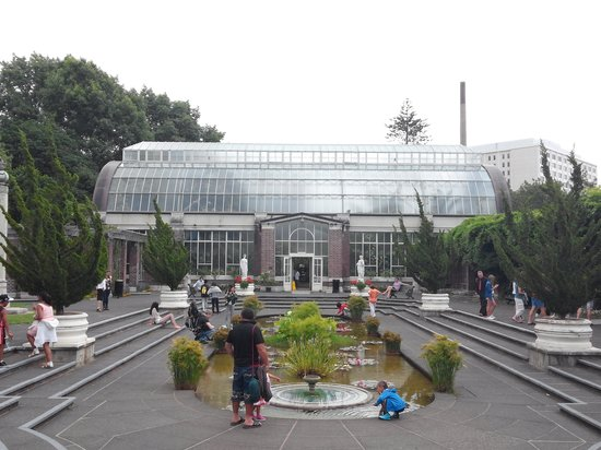 Auckland Domain : wintergarden