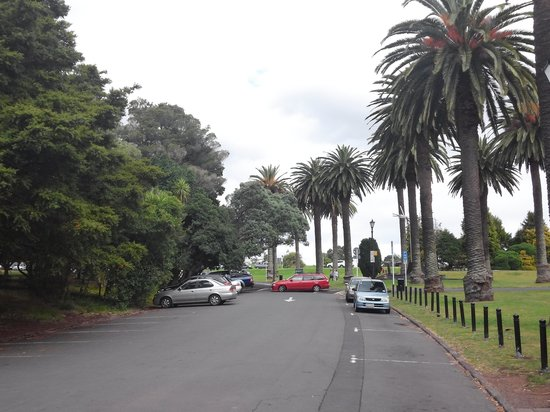 Auckland Domain: in Domain 2