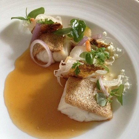 The Common Tiger: Seabass
