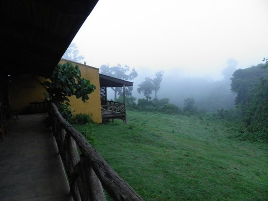 Ngorongoro Rhino Lodge: Another view of the misty morn.