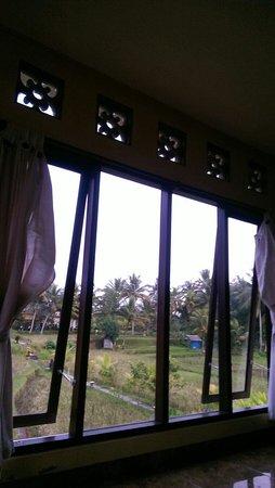 Bali Suksma Villa: Room view