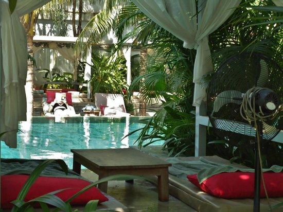 The Plantation: Pool mitten im Garten