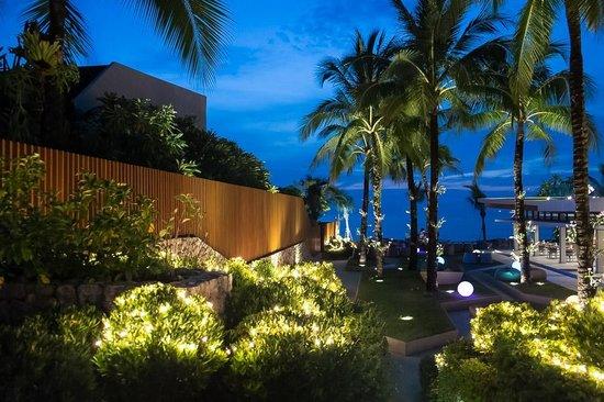 Casa de La Flora: Grounds at night