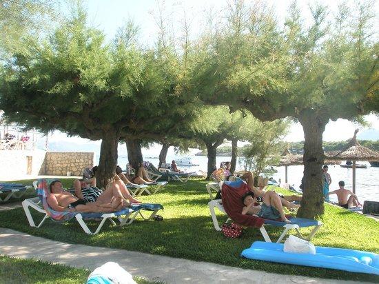 Hotel More: sun bathe area