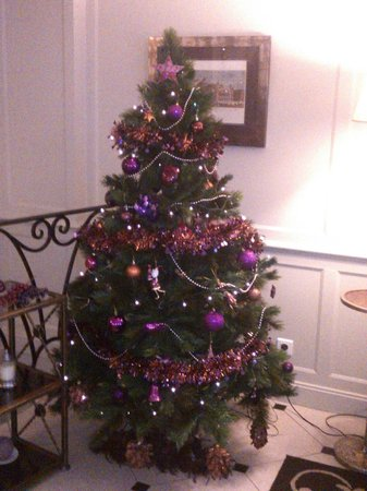 Hotel Gramont Opera Paris : Beautiful christmas tree