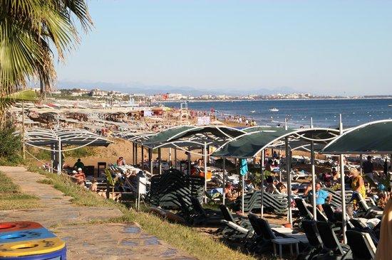 Alva Donna Beach Resort Comfort: Strand mit Blick auf Side-Altstadt