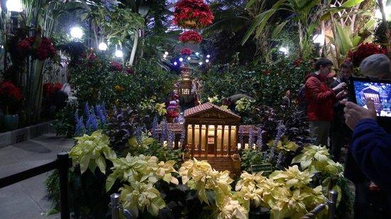 Inside of the United States Botanic Garden 26 Dec. 2013