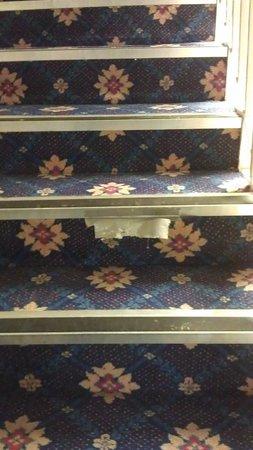 Carrington House Hotel : Main staircase
