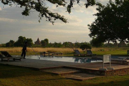 Kumudara Hotel Bagan: Pool