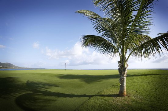 Costa Sur, Saint Kitts: Hole # 16