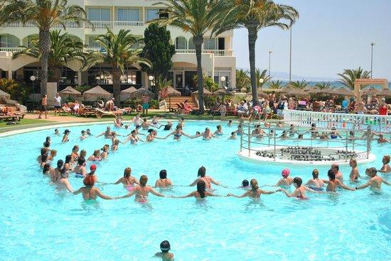 Evenia Zoraida Garden: pool bar