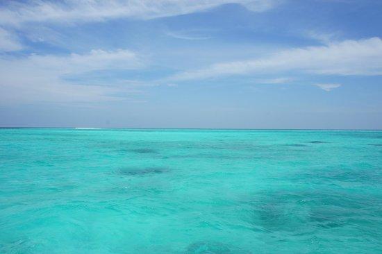 Six Senses Laamu: Море :)