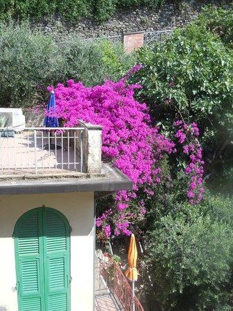Affittacamere San Giorgio: View from balcony at San Giorgio