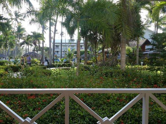Vista Sol Punta Cana : Jardines