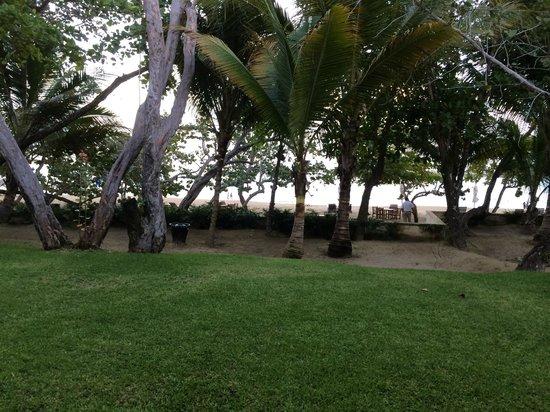 Casa Colonial Beach & Spa: Ground floor room view of beach