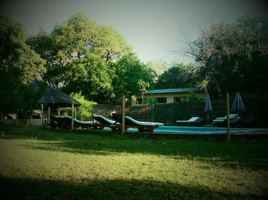Marula Lodge: swimming pool