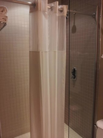 Clarion Hotel Park Avenue : Shower