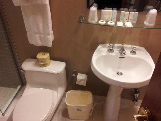 Clarion Hotel Park Avenue: Sink/Toilet