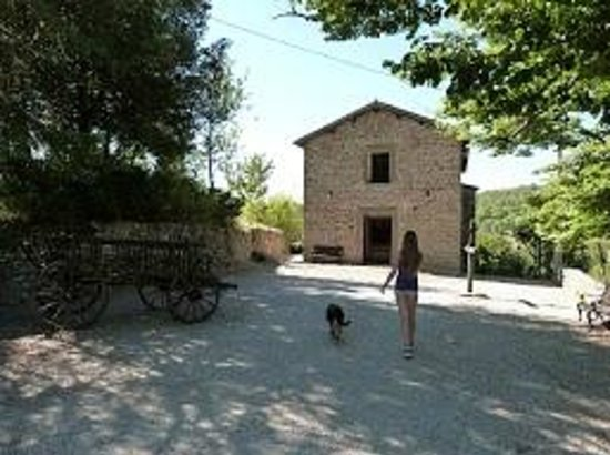 Borgo di Carpiano: Daily walk with our friend Harmony