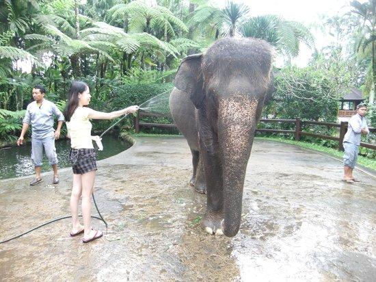 Mason Elephant Lodge: Showering