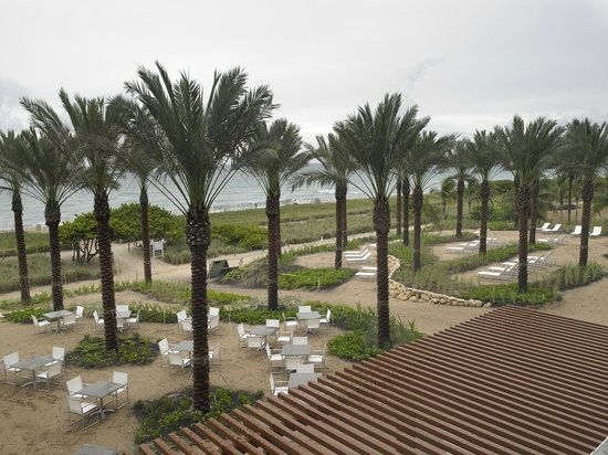 Grand Beach Hotel Surfside Oceanfront Palm Garden