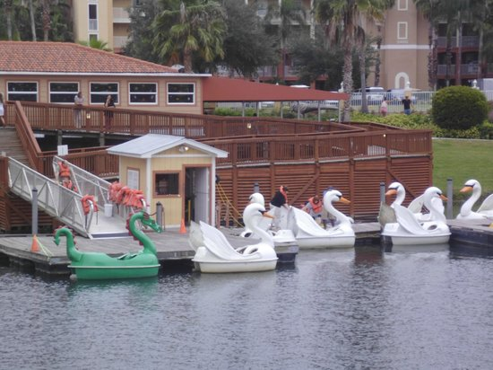 Westgate Town Center Resort & Spa: Padleboat area