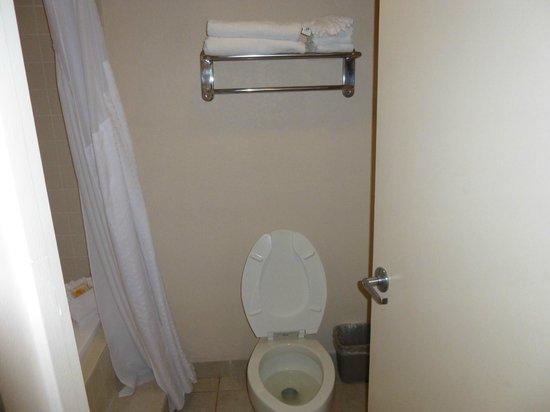 Holiday Inn Miami Beach : bagno