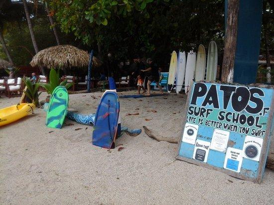 Pato's Surf School: Patos Surf School