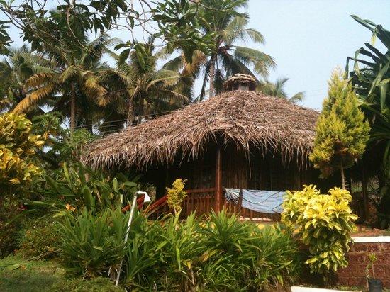 Palm Tree Bungalow : Idylle unter Palmen