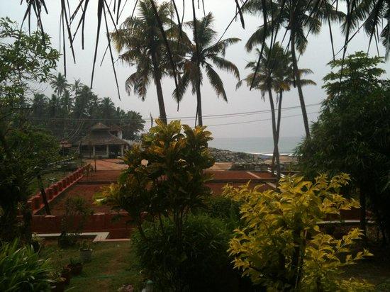 Palm Tree Bungalow : Ausblick zum Restaurant und zum Strand