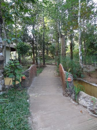Sunrise Valley Resort: Way inside resort
