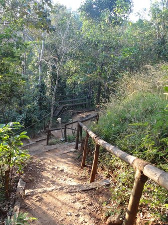 Sunrise Valley Resort: Way to observation point and pound