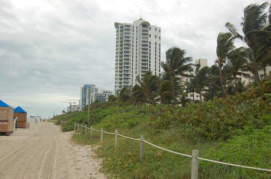 Holiday Inn Miami Beach : La passeggiata lungo l'oceano