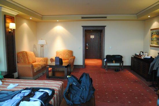Grand Hotel Sofia: Room