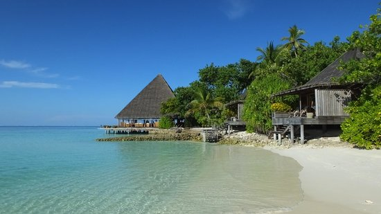 Gangehi Island Resort : Bungaloweristorante