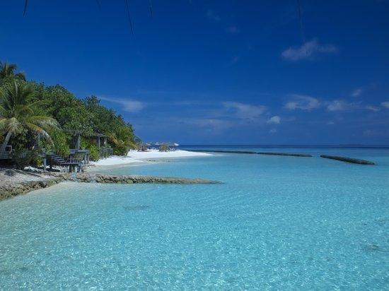 Gangehi Island Resort: Bungalow spiaggia e colori