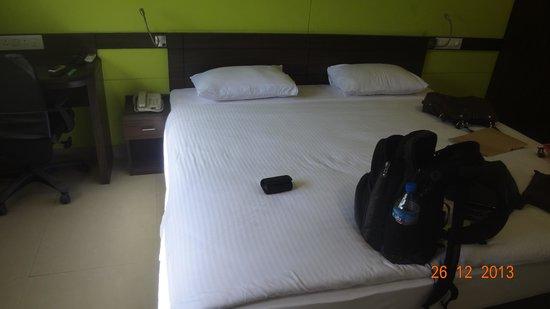 Ginger Hotel Jaipur : room view
