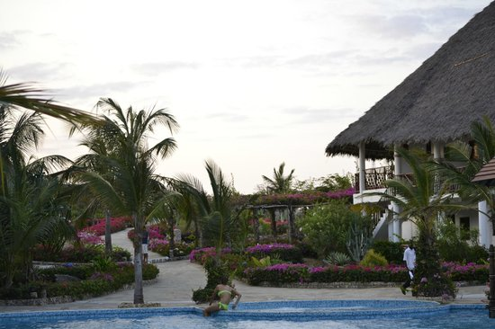 Jacaranda Beach Resort : villaggio