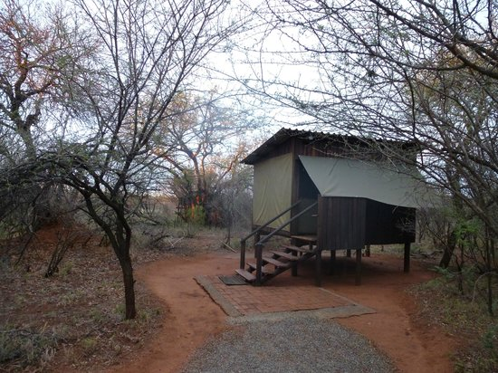 Mosetlha Bush Camp & Eco Lodge : Our cabin