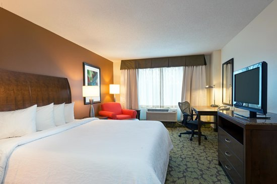 Newly Renovated King Guest Room Picture Of Hilton Garden Inn Orlando At Seaworld Orlando