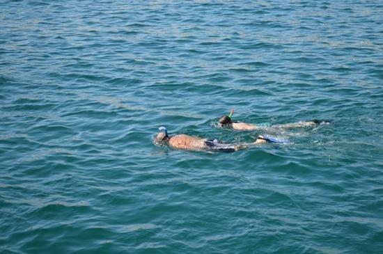 Ecocat Catamaran Tours : Chilena Bay